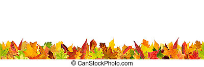 Seamless autumn colored leaves - Seamless pattern of autumn...