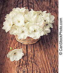 White cherry blossom flowers in a basket on wooden old...
