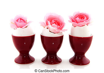 easter flowers in egg cups isolated over white