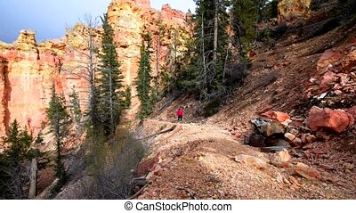 Woman Backpacker hiking down the Ponderosa Canyon Bryce...