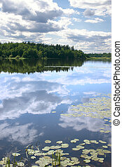 Sky reflexion in a water smooth surface of lake with growing...