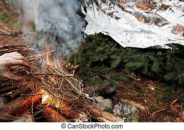 火, 點燃, 緊急事件, 人