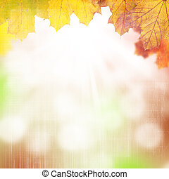 Autumn background with maple leaves - Autumn grunge...