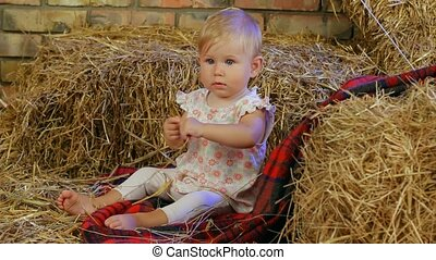 Small Child In A Haystack - A small child sits in a...
