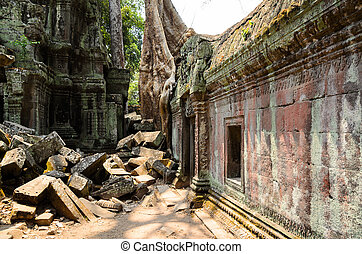 Ta Prohm, part of Khmer Angkor temple complex, popular among...