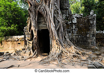 Ta Som, part of Khmer Angkor temple complex, popular among...