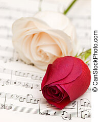 Two roses on the musical notes page