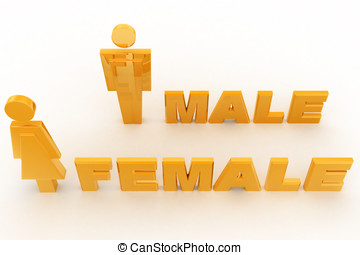 3d male and female models concept