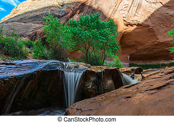 Beautiful Cascade in Coyote Gulch Grand Staircase Escalante...