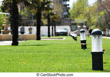 Green grass lawn with palms at the background - Green grass...