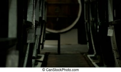 Secret Kiss In The Wine Cellar - Newlyweds secretly meet and...