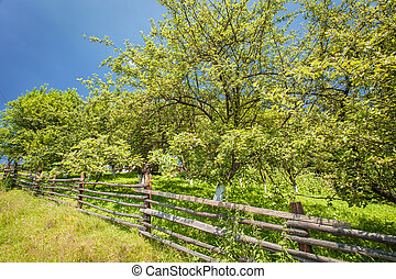 old fence in the mountains