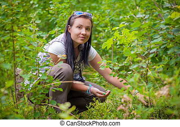 Woman collecting blueberries in the green forest in summer
