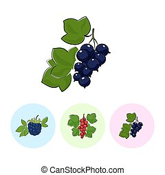 Fruit Icons, Blackcurrant ,Redcurrant , Blackberry - Berry...