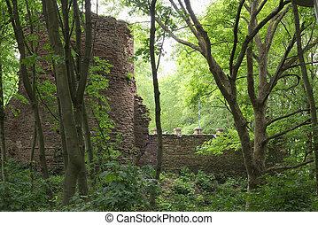 Schweinsburg Castle Ruin - Castle ruin Schweinsburg in...