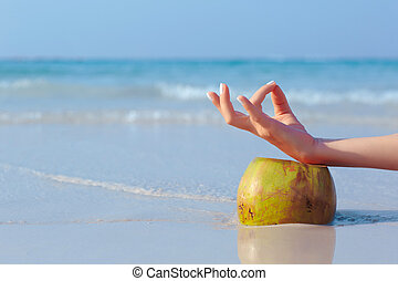 Female hand propped on coconut, sea - Female hand propped on...