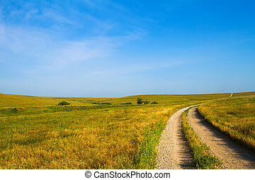 Gravel Road through Flint Hills - Country Road leading...