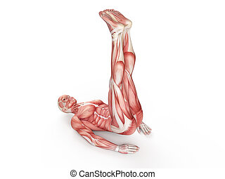 workout - pulse up - exercise illustration - pulse up