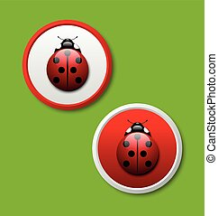 Ladybug icons - Two ladybug icons isolated on green...