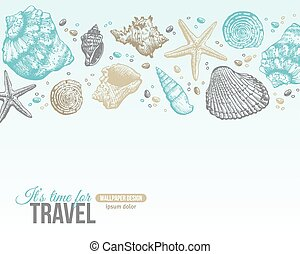 Summer Sea Shells Postcard Design Vector Background with...