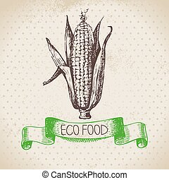 Hand drawn sketch corn vegetable. Eco food background.Vector...