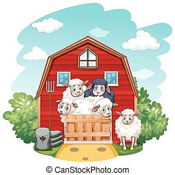 Sheeps in the barn at daytime