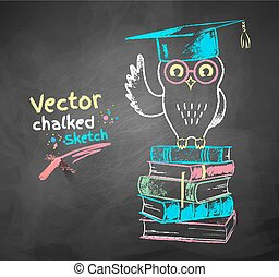Owl sitting on books. - Vector color chalk drawing of owl...