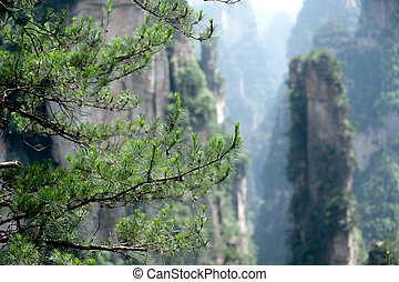 Wulingyuan Scenic Area. - Mysterious mountains in Wulingyuan...
