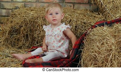 Girl On The Farm - Little girl sitting on a blanket in a...