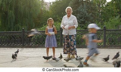 Feeding Wild Birds - A child and an old lady feeding wild...