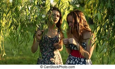 Attractive young girls talk to each other in the Park