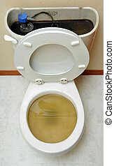 Overflowing Broken Toilet - Toilet overflowing! Brown water...