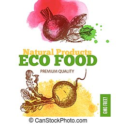 Eco food menu background. Watercolor and hand drawn sketch...