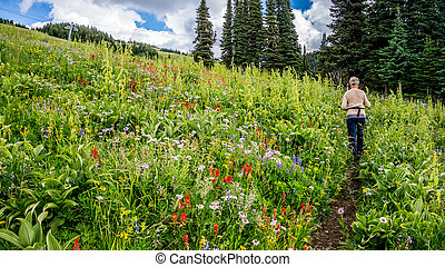 Hiking through the Wild Flowers