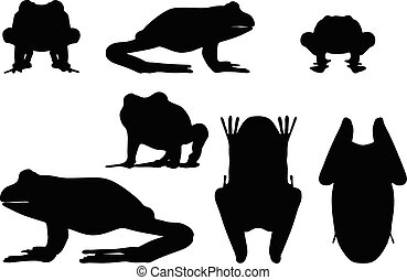 frog silhouette - Vector Image - frog silhouette isolated on...