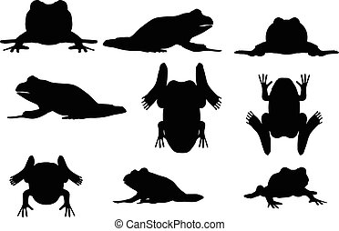 frog silhouette