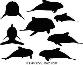 baby animals orca silhouette - Vector Image - baby animals...