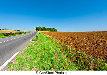 Plowed Fields - Winding Asphalt Road between Autumn Plowed...