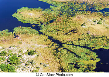 Okavango Delta aerial view - Aerial view at picturesque view...