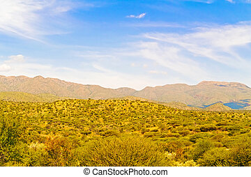 Landscape near Windhoek in Namibia - Rural area landscape...