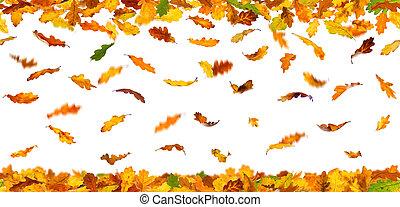 Autumn oak leaves - Seamless pattern of autumn oak leaves...