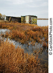 old shack in the swamp