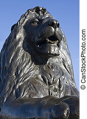Trafalgar lion front on - Close up of one of the bronze...
