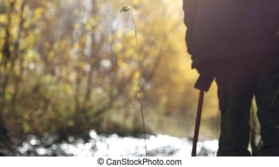 Grandfather with a cane walking outdoors on path in autumn forest