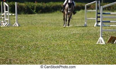 Slow motion.Horse jumping a hurdle in competition