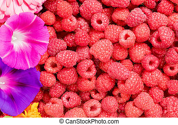 Raspberries and flowers - Background consisting of...