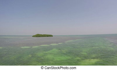 Florida Keys Mangrove Island Shot One