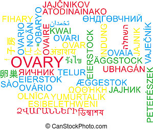 Ovary multilanguage wordcloud background concept -...