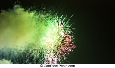 Fireworks in the night sky - Fireworks in the sky...