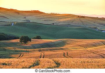 Beautiful Tuscan sunset